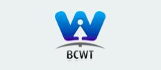 BG Women In ICT